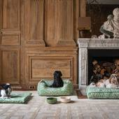 #new #dogbeds  #catbeds @casa__lopez  available now.  preview of a fabric from the new collection @casa__lopez @thevenon  which will be revealed next november