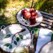 #fall @casa__lopez #apple #dishes